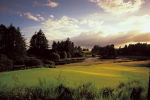 Tayside Golf Courses