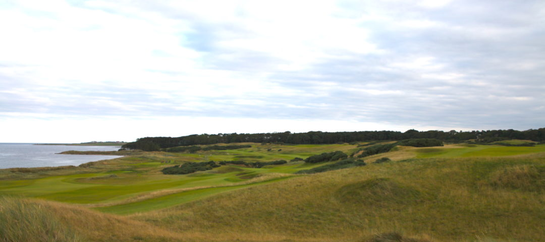 Kingsbarns View